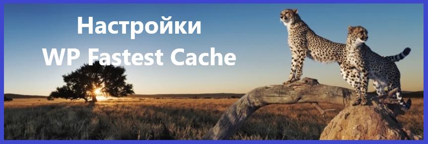 Настройки WP Fastest Cache
