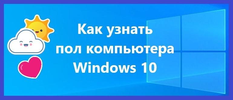 Как узнать пол компьютера Windows 10