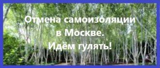 Отмена самоизоляции в Москве